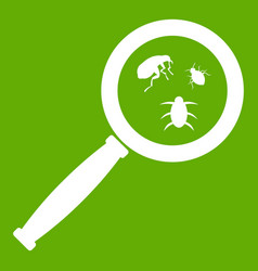 magnifier and insects icon green vector image