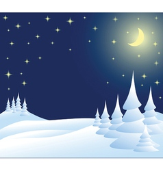 winter christmas landscape in night vector image vector image