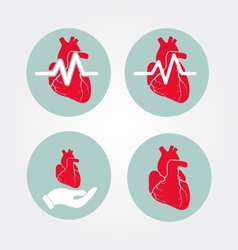 Human heart icon set with cardiogram and human vector image vector image
