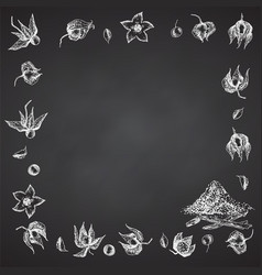 Ashwagandha hand drawn border frame pattern vector