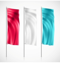 Banner flag vector image