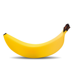 fruit banana full screen white background with vector image