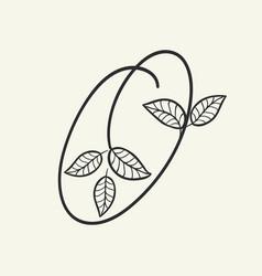 handwritten letter o monogram or logo brand vector image