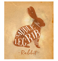 rabbit cutting scheme craft vector image