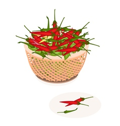 A Brown Basket of Red and Green Chili Peppers vector image