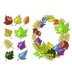 autumn leaves set hand drawn vector image vector image