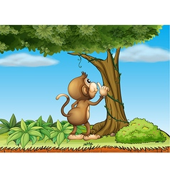 A monkey watching a tree vector image