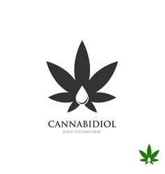 medical cannabis business logo concept vector image