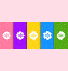 set bright seamless creative backgrounds vector image