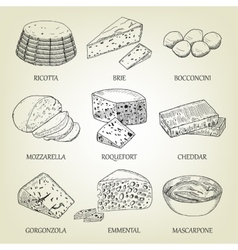 Set of different kinds of graphic cheese vector image
