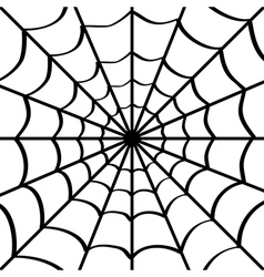 Spider web on white vector image