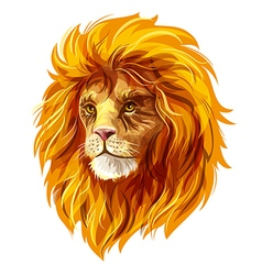 Head of a lion EPS10 vector image vector image