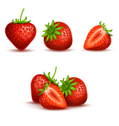 realistic sweet and fresh strawberry vector image vector image