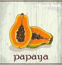 Hand drawing of papaya Fresh fruit sketch vector