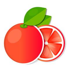 juicy grapefruit fruit with fresh green leaf vector image