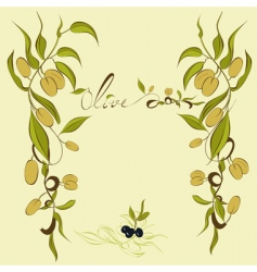 Olives branches vector