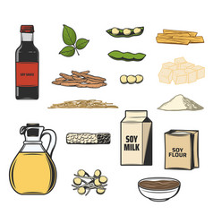 Soy bean food products sauce milk and tofu vector