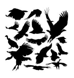 Big griffon vulture animal silhouettes vector