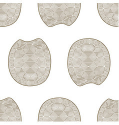 carapace turtle zen tangle seamless pattern vector image