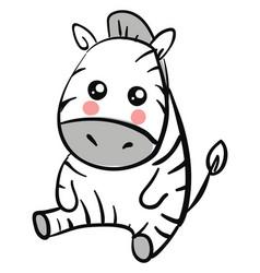 cute zebra on white background vector image