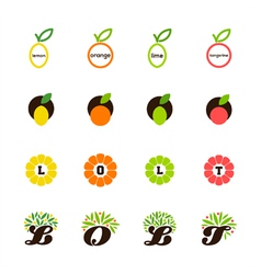 Lemon orange lime tangerine grapefruit vector image vector image