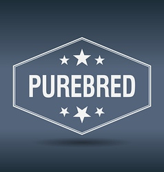 Purebred hexagonal white vintage retro style label vector