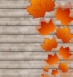 Autumn leaves maple on wooden texture vector image vector image