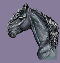 Colorful hand drawing horse portrait-5 vector