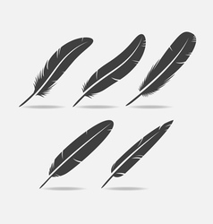 Feather Black Icon vector