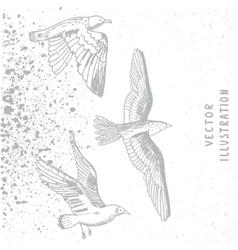 Grunge birds white vector