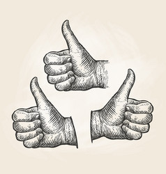 Hand gesture thumbs up vintage sketch vector