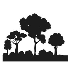 silhouette trees bushes forest ecology design vector image