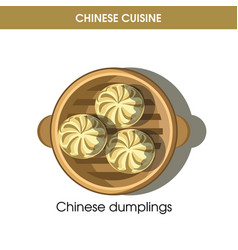 chinese cuisine meat dumplings traditional dish vector image vector image