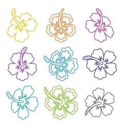 hibiscus flower outline icons vector image