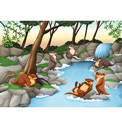 Beavers living by the river vector image