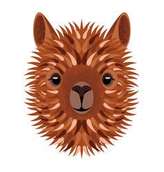 Alpaca face geometric style vector