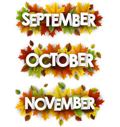 autumn banners with colorful leaves vector image