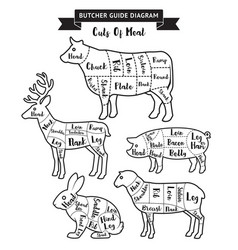 Butcher guide cuts meat diagram vector