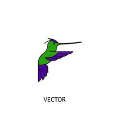 colibri bird icon vector image