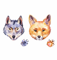 cute watercolor fox and wolf hand-drawn animals vector image