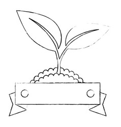 Emblem of plant icon vector