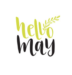hand lettering hello may social media blog icon vector image