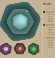 Infographic color template vector image