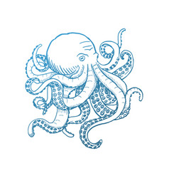octopus vintage isolated on vector image