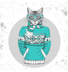 retro hipster animal cat dressed in pullover vector image