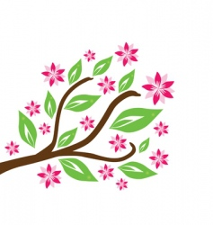 floral branch vector image vector image