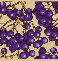 Black rowan berries pattern vector