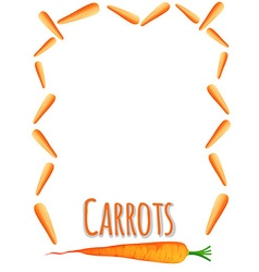 Border design with fresh carrots vector image