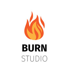 Burn studio fire flame logo vector