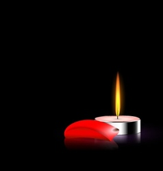 Candle and red petal vector